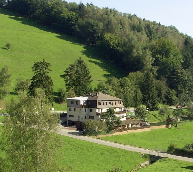 Hotel - Landgasthof Grüner Baum